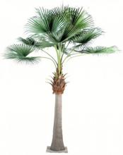 Stort kunstigt palmetræ H690 cm