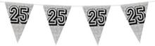 Holografische vlaggenlijn 8 m met het cijfer 25 zilver