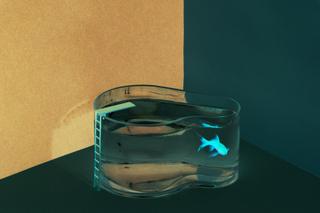 Akvarie - Fishpool