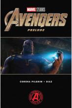 Marvel's Avengers: Endgame Prelude (Taschenbuch)
