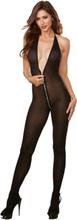 Dreamgirl - Genomskinlig Halterneck Catsuit med djup rygg och lång dragkedja