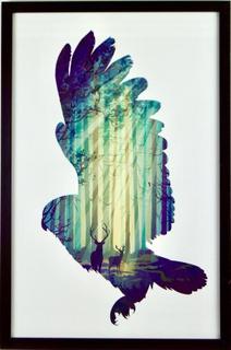 Eagle Tavla/ tavla örn, 40x60cm, inramad