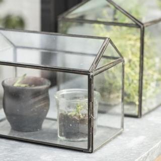 Växthus, mini
