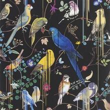 BIRDS SINFONIA CREPUSCULE - PCL7017/01