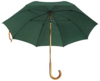 Paraply Rönnsbols