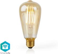 SmartLife LED filament E27 ST64 5W (40W)