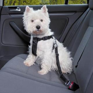 Säkerhetssele bil, Trixie