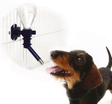 Vattenautomat för hundbur