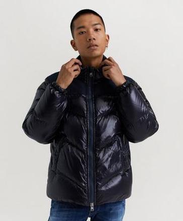 Woolrich Jacka Logo Arctic Jacket Blå