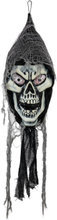 Halloween Maleging zombi skull