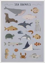 Bloomingville Cay Tavla med ram (Sea Animals)