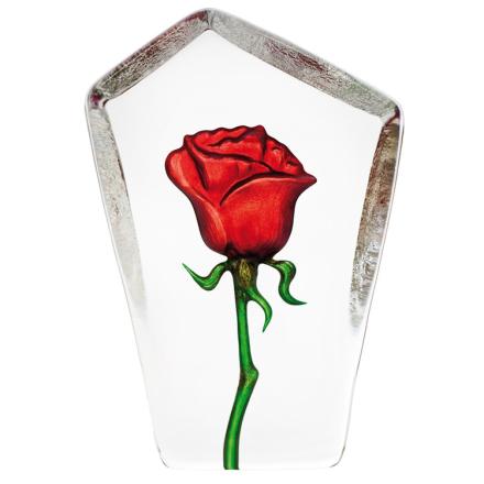 Målerås Glasbruk - Floral Fantasy Rose