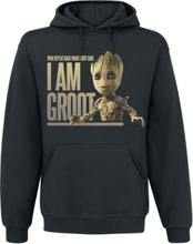 Guardians Of The Galaxy - 2 - Groot - Button -Hettegenser - svart
