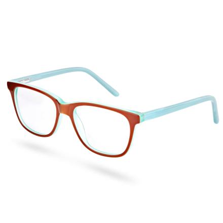Briller med Blå og Rød Innfatning