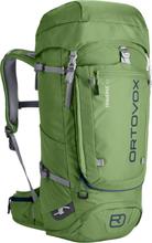 Ortovox Traverse 40 Alpine Backpack eco green 2019 Skidryggsäckar