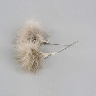 Fluffiga Fjädrar 12 pack - Mullvad