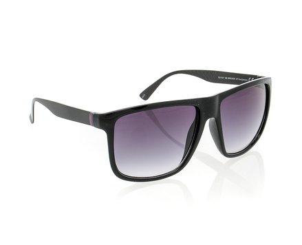 Brewer Sunglasses