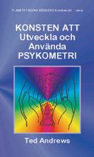 Konsten att utveckla och använda psykometri