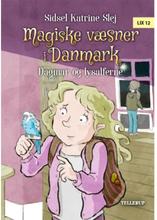 Dagmar og lysalferne - Magiske væsner i Danmark 4 - Hardback