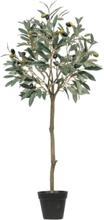 Living&more kunstig plante - Oliventræ