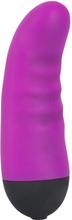 Purple Touch Vibe Klitoris Vibrator