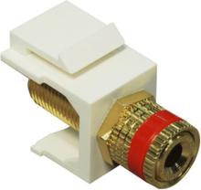 Keystone speaker modul red with terminal