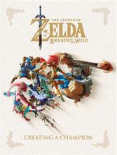 Legend of Zelda Bok Creating a Champion Breath of the Wild