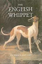 English whippet