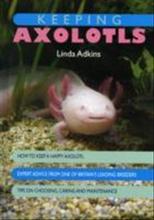 Keeping axolotls