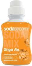 Ginger Ale - 375 ml