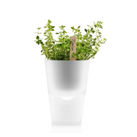 Eva Solo - Selvvannende urtepotte, frostet glass, 11cm