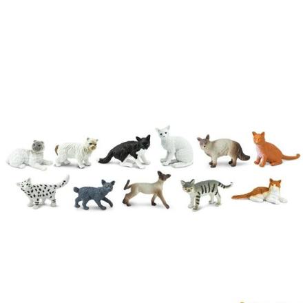 Safari, Tub Katter