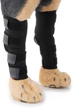 Hund Rear Hock Braces Hund Hind Hock Joint Ärmel mit Sicherheitsgurt Reflektierende Straps