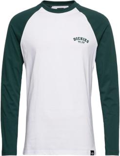 Dickies Baseball T-Langærmet Skjorte Multi/mønstret Dickies