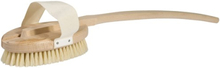 Rygg- & Badborste i trä med svinborst