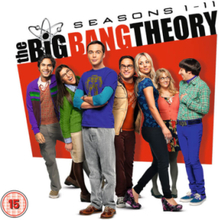Big Bang Theory Season 1-11