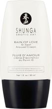 Shunga Rain Of Love G-punkt Creme