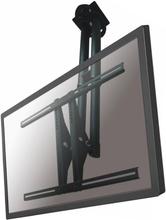 NewStar Takfeste for flatskjerm PLASMA-C100BLACK