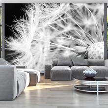 Fototapetti - Black and white dandelion