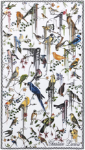 Christian Lacroix - Birds Sinfonia Perce-Neige Bath Towel, 100x180 cm