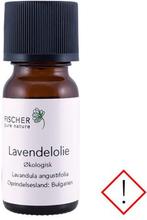 Lavendelolie æterisk øko, 5 ml
