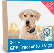 Edition 2019 - Tractive GPS Tracker Hund - GPS Hund Hundpejl med aktivitetsspårning