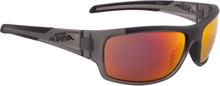Alpina Testido Cykelbriller, anthracite matt-black 2020 Briller