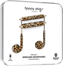 Wireless II - Leopard