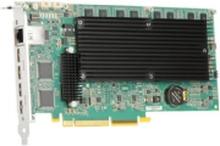 Matrox Mura IPX Series MURAIPXI-D4JHF - Videooptagelsesadapter - PCIe 2.0 x16