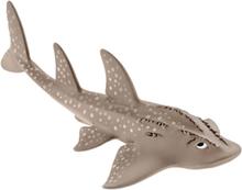 Wild life Guitarfish