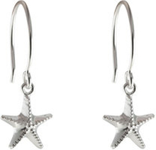 Beaches Earrings Starfish, ONE SIZE
