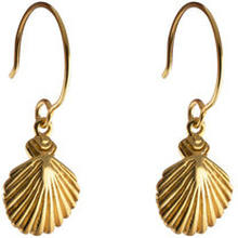 Beaches Earrings Shell , ONE SIZE