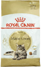 Royal Canin kattefoder - Maine Coon
