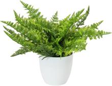 Fern bush in pot, artificial plant , 22 leaves, 33cm